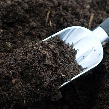 Exceptionnel Garden Soil