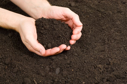 how-important-is-topsoil