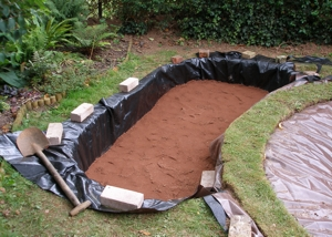 How To Build A Bog Garden: making a pond