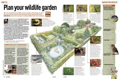 Wildlife Gardening - How to Create a Wildlife Friendly Garden