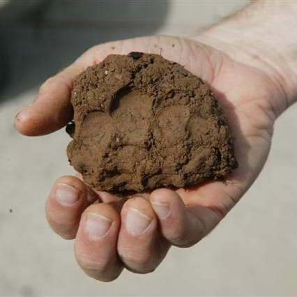 Different types of topsoil information on topsoil types for Soil details
