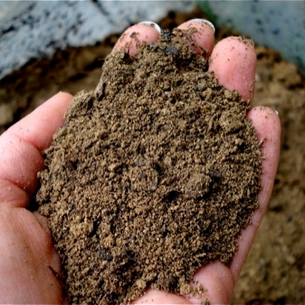 Different types of topsoil information on topsoil types for Four types of soil