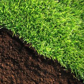 Turf suppliers topsoil shop supplies quality turf topsoil for Quality topsoil