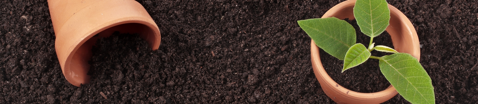 Topsoil Calculator Work Out How Much Topsoil You Need